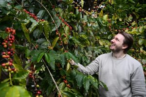 Tamborine Mountain Coffee Plantation